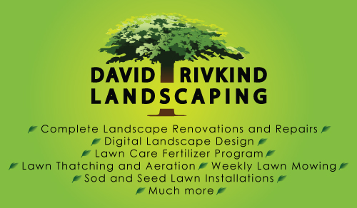 David Rivkind Landscaping Business card back - Graphic Design Services based in Sacramento by ZrysMedia