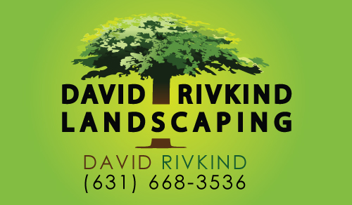 David Rivkind Landscaping Business card front - Graphic Design Services based in Sacramento by ZrysMedia